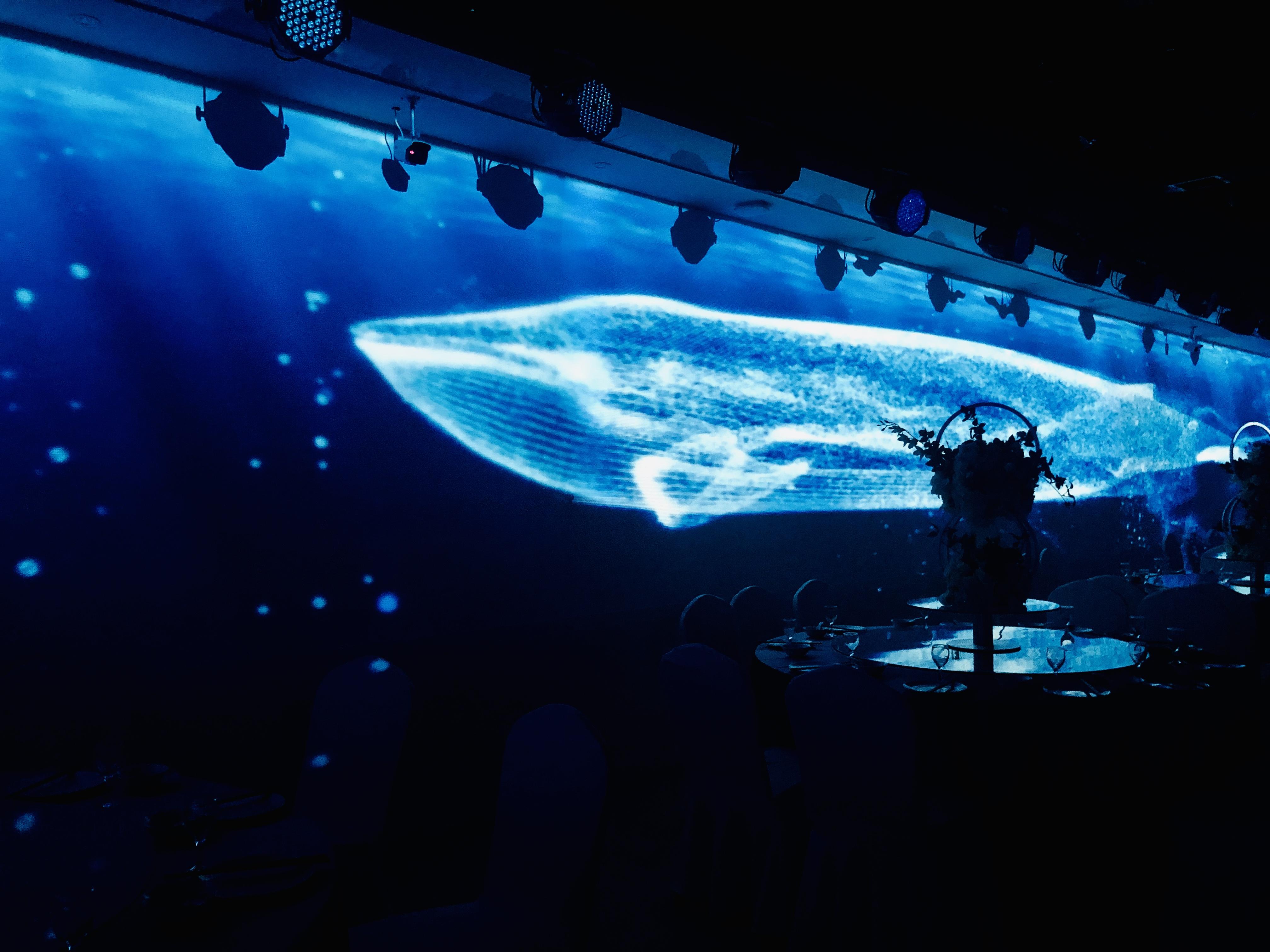 沈阳泊漫全息投影KTV、酒吧、宴会厅、餐厅、整装,加盟服务。