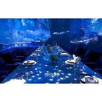 3D全息、互动投影、墙体投影、全息餐厅、水幕全息