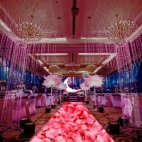 全息纱幕全息幕3D全息婚礼婚庆全息投影设备