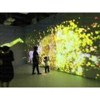 全息互动光影展花之动物园