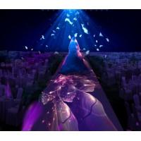 3D全息投影婚礼逐渐成为市场的潮流